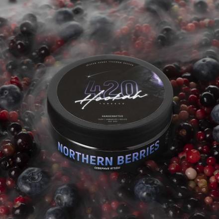 Табак 4.20 Northern Berries 25 грамм (северные ягоды)