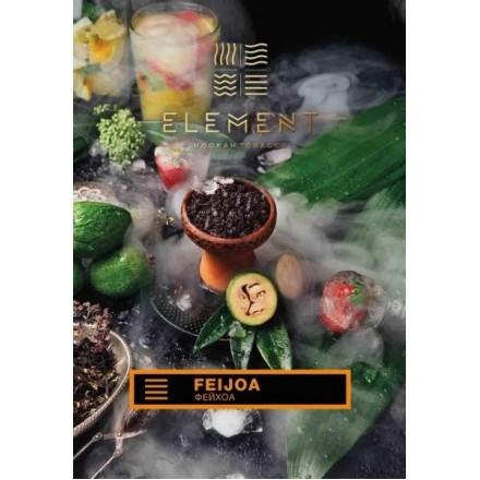 Табак Element Earth Feijoa 100 грамм (фуйхоа)