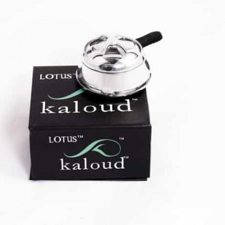 KALOUD LOTUS ORIGINAL